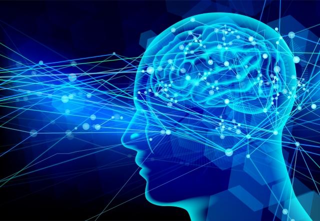 テスト勉強を始める前に知っておきたい「時間と脳の働き」とは⁈